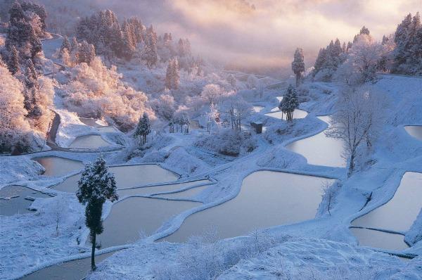 Winter_japan