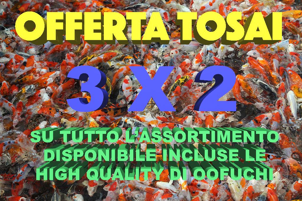 OFFERTA_TOSAI_2017