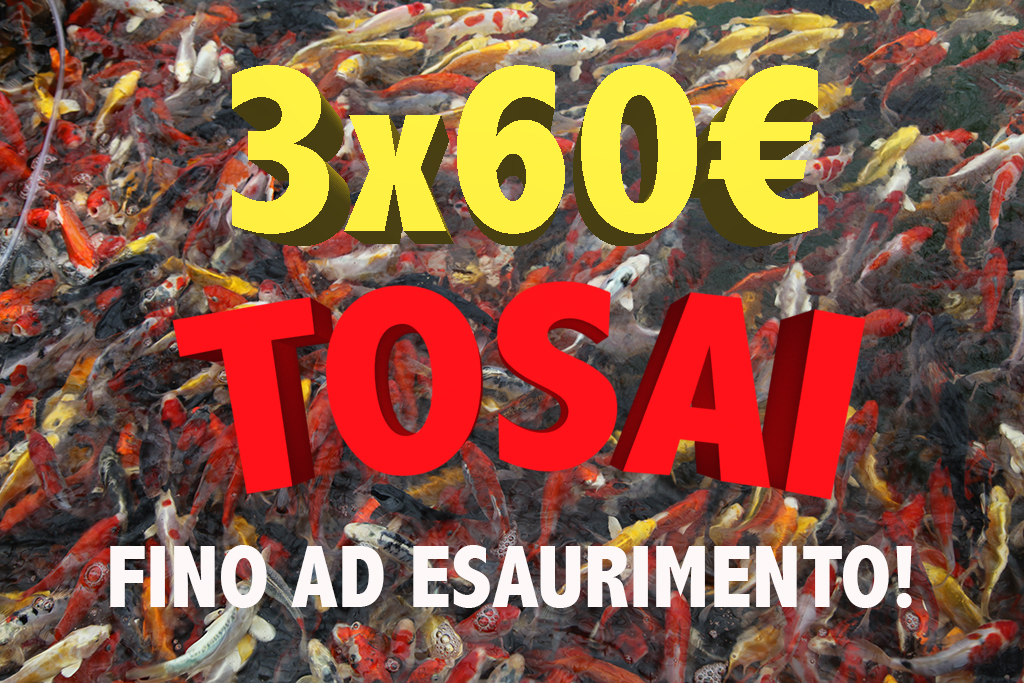 offerta_tosai