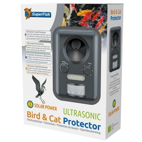 bird-cat-protector-art